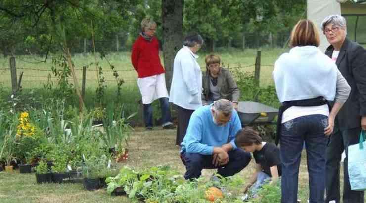 Plantes, Senteurs et Saveurs